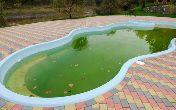 Clean Green Pools With Maintenance Or A One Time Pool Cleaning Service