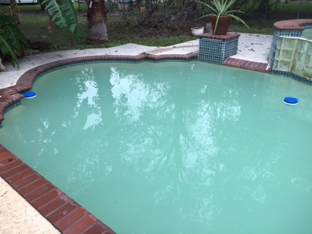 Pool Cleaning Companies May Encounter These Common Types Of Algae