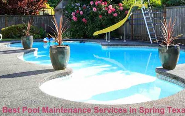 Best Pool Maintenance Services in Spring Texas